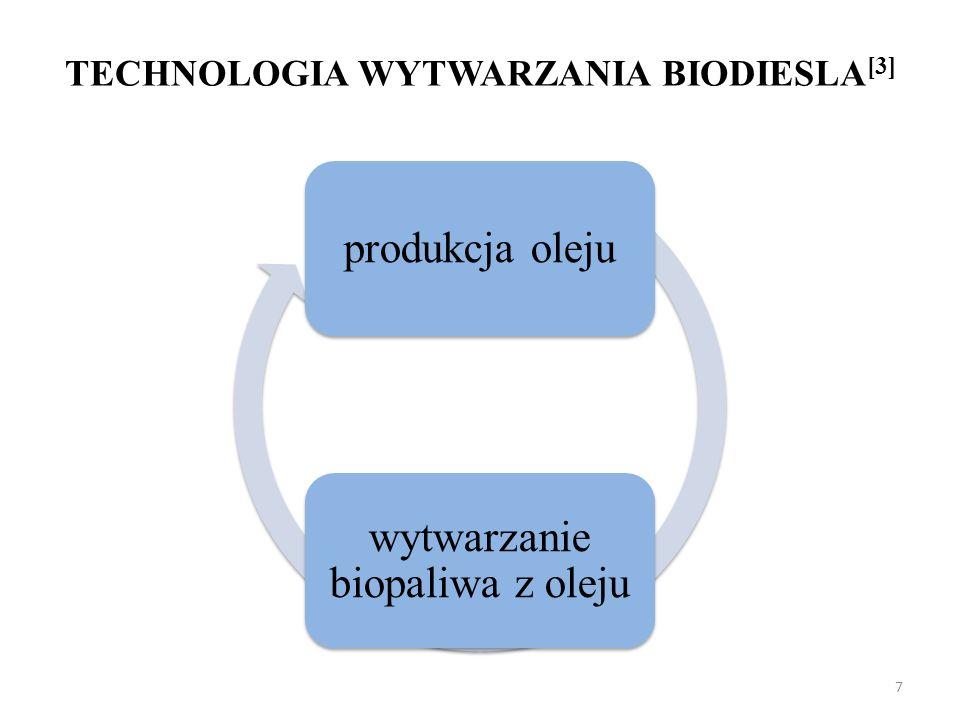 TECHNOLOGIA WYTWARZANIA BIODIESLA[3]